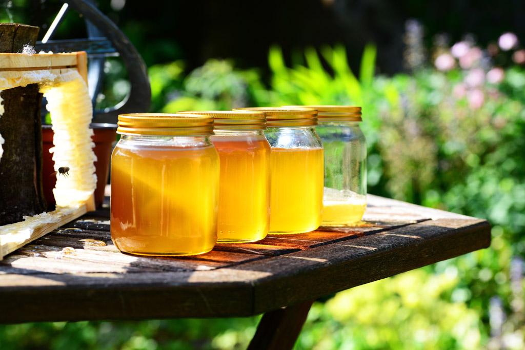 赤ちゃんに黒糖・蜂蜜与えたらダメって知ってた?ボツリヌス菌について調べてみた