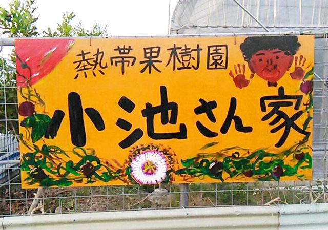 熱帯果樹園小池さん家