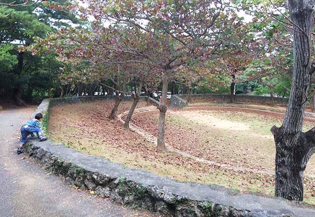 浦添大公園の新しい遊具の広場