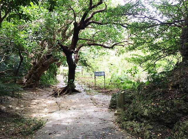 シルミチューの自然