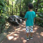 沖縄・名護「DINO恐竜パークやんばる亜熱帯の森」に行ってきた!